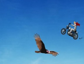 Jump-the-canyon-on-a-motorcycle